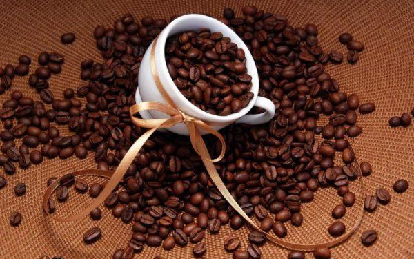 Hàng ngàn quán cà phê nguyên chất hiện nay đâu là cơ hội cho bạn?