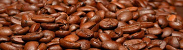 Ở đâu cung cấp cà phê rang xay chuẩn vị uy tín ở Hà Nội, TPHCM?