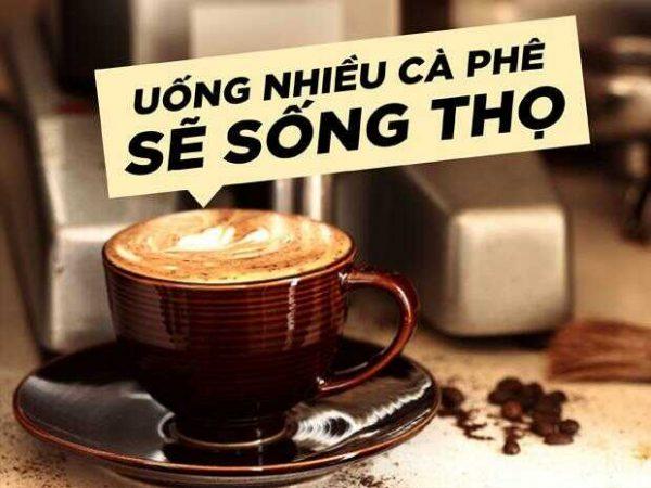 Uống cafe nguyên chất tốt cho sức khoẻ như thế nào?