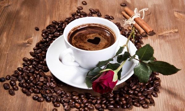 Bí kip giúp bạn chọn nhà cung cấp cafe sạch uy tín và chất lượng