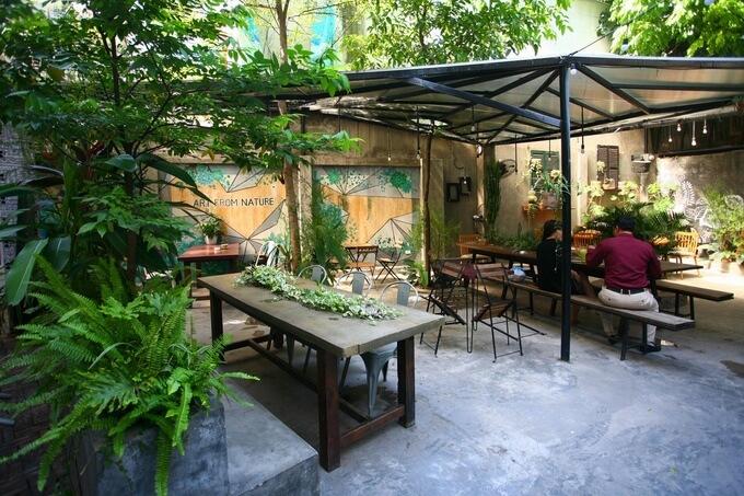 Quán cà phê rợp cây xanh ở trung tâm Hà Nội